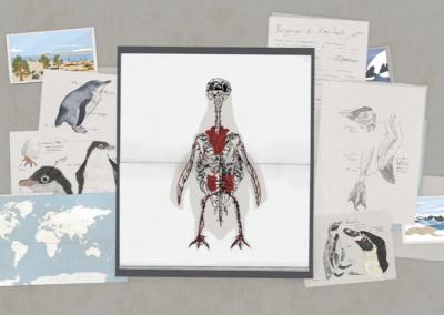 El origen de los pingüinos